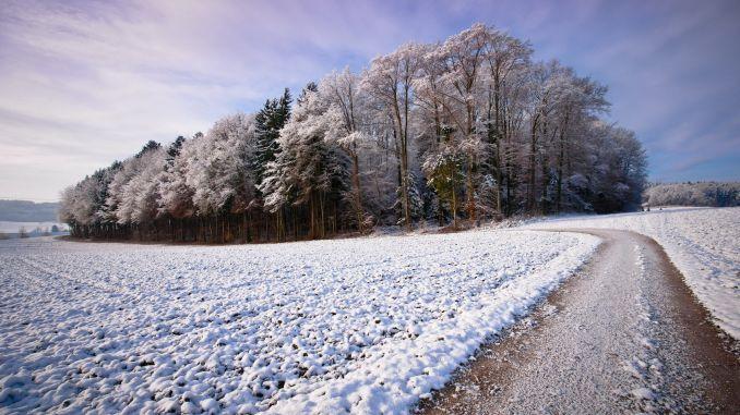 Primele ninsori zapada prognoza meteo