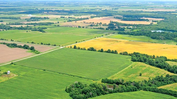 Cel mai scump teren agricol din Romania