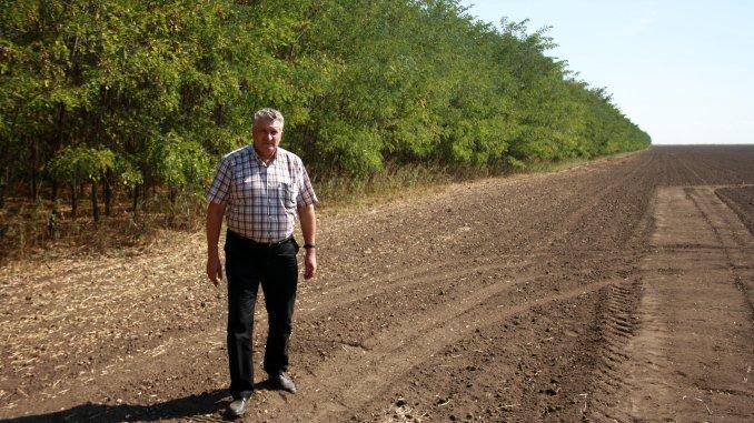 Gheorghe Albu la perdele forestiere