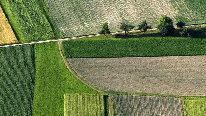 Schimbari APIA pentru ANT teren agricol subventii
