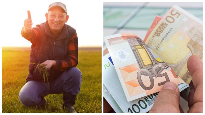 comerț cu opțiuni de obligațiuni învățând să schimbe nevsky