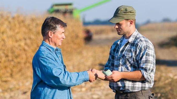 Subventia APIA bani fermieri arenda
