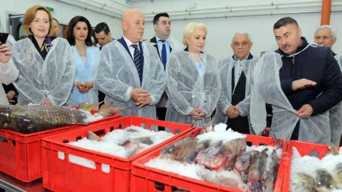 Inaugurare Bursa de Peste Tulcea