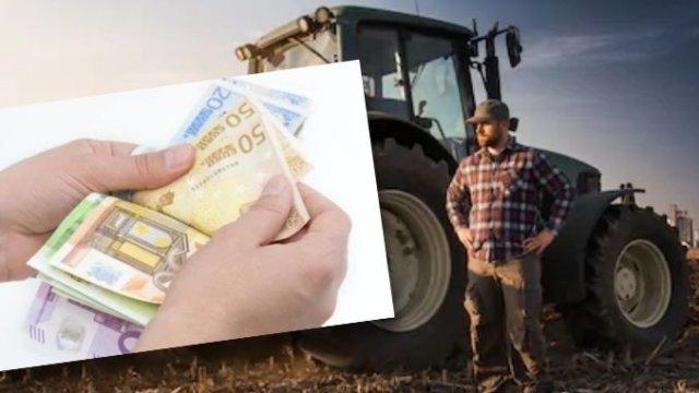 Motivul pentru care cultura de ciuperci nu primește subvenții agricole