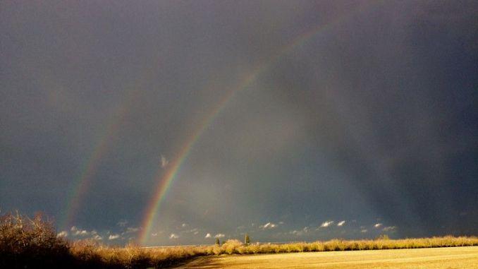Foto: www.pinterest.co.kr
