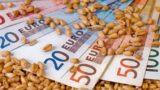 Ministrul Oros: Prețul grâului nu va fi influențat de secetă! Fenomenul a afectat doar zona Mării Negre
