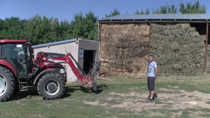 Cimbru-Vlad-fermier-din-Iasi3-ferma