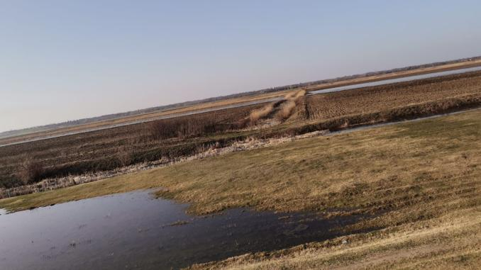 terenuri-inundate-stefan-musca-1