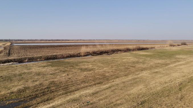 terenuri-inundate-stefan-musca-3
