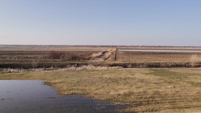 terenuri-inundate-stefan-musca-5