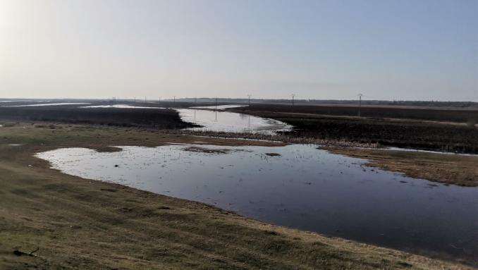 terenuri-inundate-stefan-musca-6