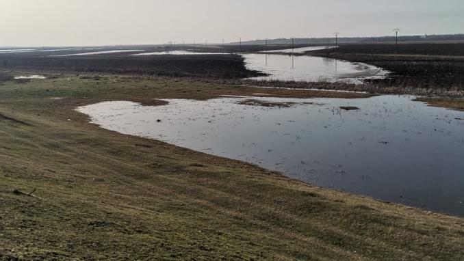 terenuri-inundate-stefan-musca-9
